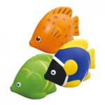 Anti stress Fish