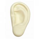 Anti Stress Ear